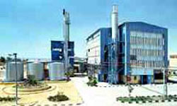 Extension to Egyptian Plant Complex